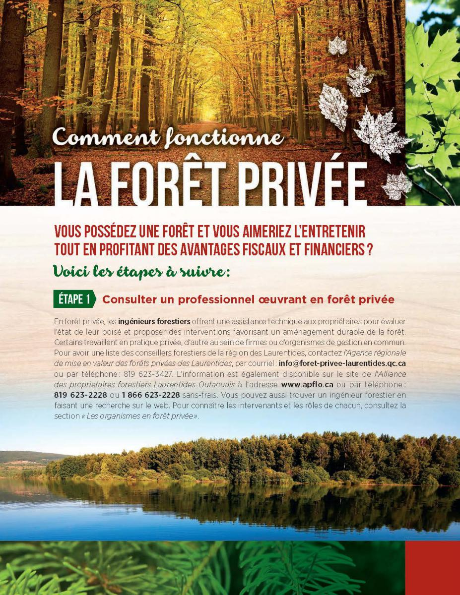 Guide PDF - A guide to good private forest management